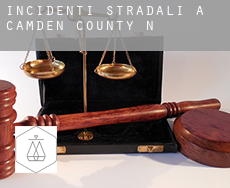 Incidenti stradali a  Camden County
